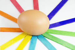 Eggs. On color and white background Stock Photos
