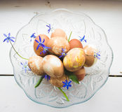 Eggs composition Stock Image