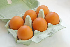 Eggs in container Royalty Free Stock Image