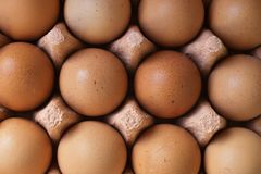 Eggs for cooking. Eggs in the box for cooking Stock Image