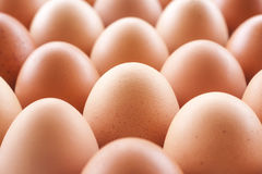 Eggs cooking for breakfast, a protein form yolk and albumen on a white background, or on a plain wooden table. Eggs cooking for breakfast, a protein form yolk Stock Photo