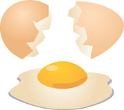 Eggs cracked open. Shell and egg with yolk illustration Royalty Free Stock Photo