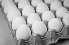 Eggs on crate Stock Photography