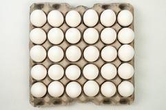 Eggs on crates Stock Photo