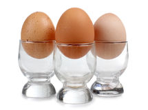 Eggs in cup Stock Images