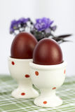 Eggs in a cup Stock Images