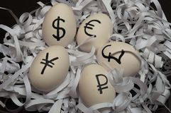Eggs with currency signs Stock Image