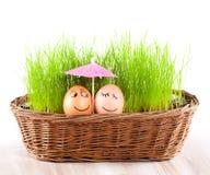 Eggs das lustige Lächeln zwei unter Regenschirm im Korb mit Gras. Sonnebad. Stockfoto