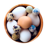 Eggs. Decoration easter vector background Royalty Free Stock Photos