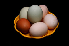Eggs. Delicacy eggs in the kitchen Stock Image