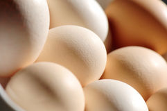 Eggs in different shades Stock Image