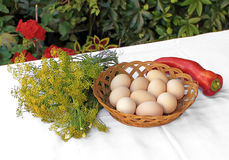Eggs, dill and red pepper. Ten eggs in a basket and red pepper Stock Photos