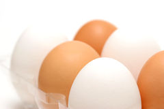 Eggs diversity. Brown and white eggs mixed together in plastic tray Stock Photography