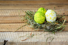 Eggs on dry grass Stock Photo