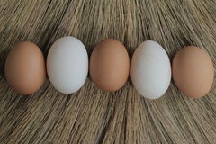 Eggs and duck eggs with grasses backgrounds. Shopping white and brown fresh hens eggs on my hand Stock Photos