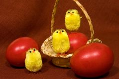 Eggs and easter chicks Stock Photos