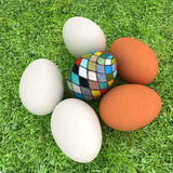 Eggs and easter eggs on grass Stock Images