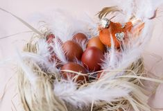 Eggs, Easter, nest, bird, painted, brown, Easter eggs, feathers. Eggs, Easter, nest, bird, brown Easter eggs, feathers, eggs, Easter, nest, bird, brown Easter royalty free stock image