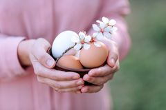 Eggs for Easter with a sprig of spring flowers in the hands of a girl. royalty free stock photography