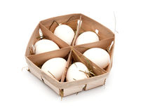 Eggs in eco box. Stock Image