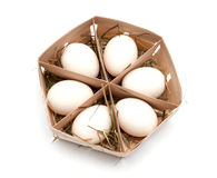 Eggs in eco box. Stock Photos