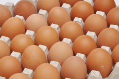 Eggs in an egg box Royalty Free Stock Photos