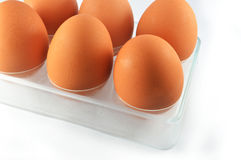 Eggs in an egg box. Brown eggs in an egg white box Royalty Free Stock Photos