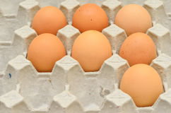 7 Eggs in egg box Royalty Free Stock Image
