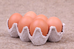 Eggs in Egg Carton Stock Image