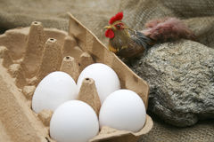 Eggs in the egg carton. And with chicken Stock Photo