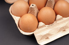Eggs in an Egg Carton Stock Photography