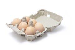 Eggs in Egg Carton Royalty Free Stock Photography