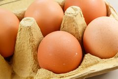 Eggs in an egg carton. Five eggs in a beige egg carton royalty free stock image