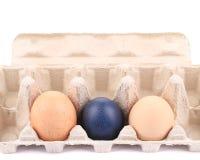 Eggs and egg carton. Stock Photography
