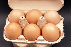 Eggs in an Egg Cartot Royalty Free Stock Image