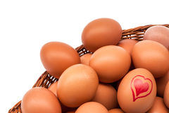 Eggs in an egg holder Stock Photography