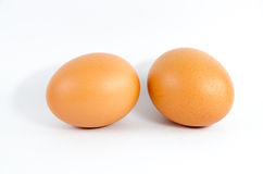 Eggs. A egg on white background Royalty Free Stock Images