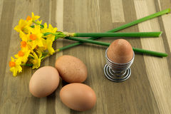 Eggs,eggcup and daffodils. Speckled free range eggs with spring daffodils Stock Image