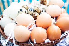 Eggs on eggs background. Easy raw food Stock Photo