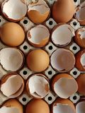 Eggs and eggshell royalty free stock image