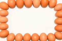 Eggs el fondo Imagen de archivo libre de regalías
