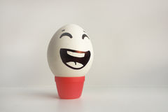 Eggs emotion concept. Eggs face. Photo for design Royalty Free Stock Image
