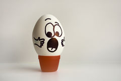 Eggs emotion concept. Eggs face. Photo for design Stock Image