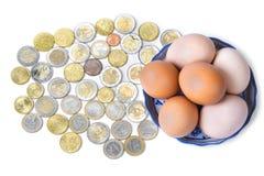 Eggs with euro coins money in basket on white.  Stock Photos