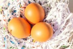 Eggs a exploração agrícola de galinha no fundo Imagens de Stock Royalty Free