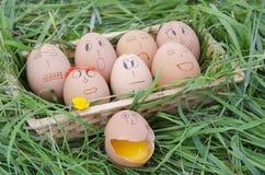 Eggs family Stock Photo