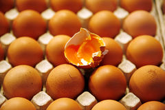 Eggs on farmers market Stock Photography