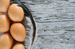 Eggs and feather on the old wood Royalty Free Stock Image