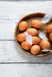Eggs and feather on tray Stock Image