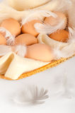 Eggs and feathers Royalty Free Stock Images
